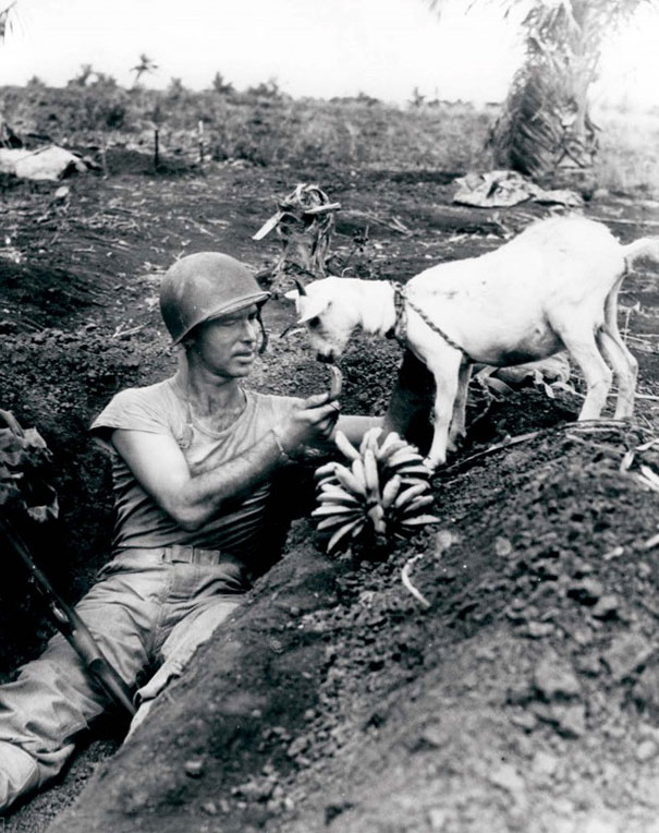 Soldier-shares-a-banana-with-a-goat-during-the-battle-of-Saipan-CA.-1944